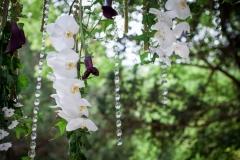 Fleurs de the reves  (1)