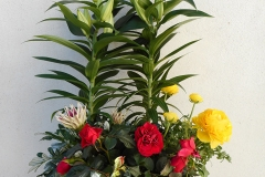 Fleurs de the reves  (8)
