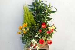 Fleurs de the reves  (9)